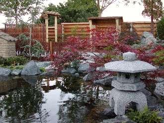 Start p en japansk inspireret have og koidam for Planter til koidam