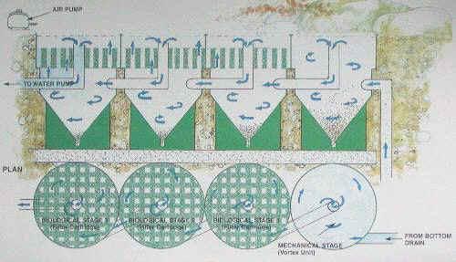Koi Dam Planl Gning Gode R D Og Ideer Inden Man Starter